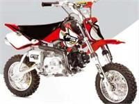 Ficha FACTORY BIKE Mini Desert FS 110