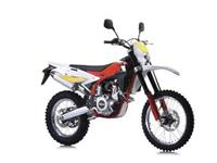Ficha SWM RS 300 R