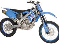 Ficha TM MX 250 F