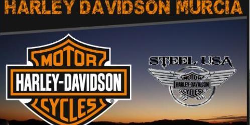 logo de Steel Usa